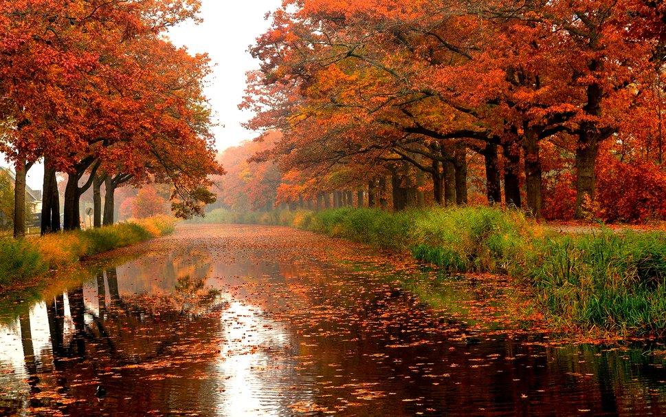 autunno e pioggia notiziariometeo