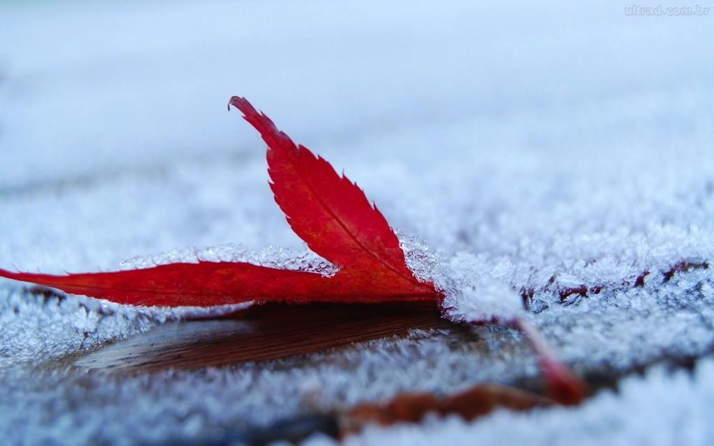 inverno in arrivo
